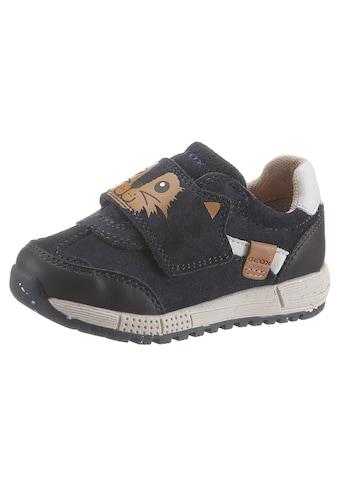 Geox Kids Sneaker »WWF-Kollektion ALBEN BOY«, mit Klettverschluss kaufen