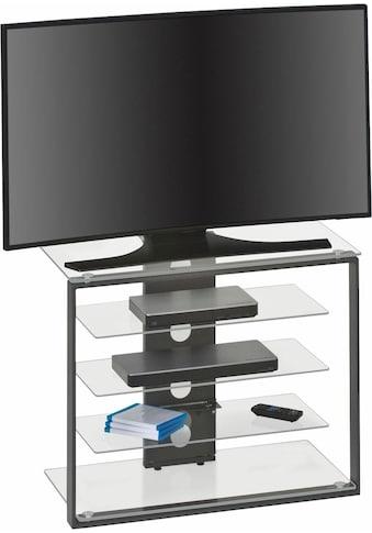 Maja Möbel TV-Rack, Höhe 65,6 cm kaufen