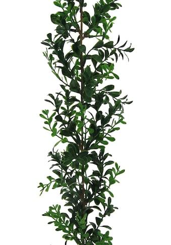 Creativ green Kunstgirlande »Buchsbaumgirlande« (1 Stück) kaufen