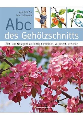 Buch »Abc des Gehölzschnitts / Jean-Yves Prat, Denis Retournard, Cornelia Panzacchi« kaufen