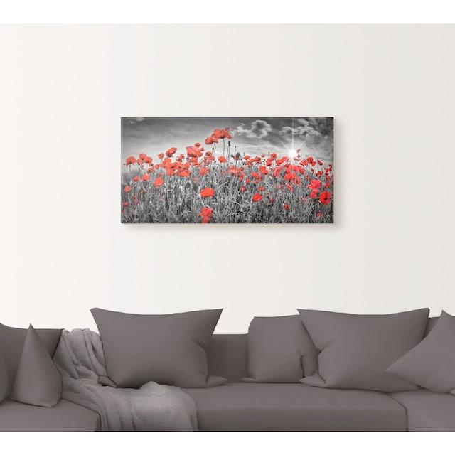 Artland Wandbild »Idyllisches Mohnblumenfeld mit Sonne«
