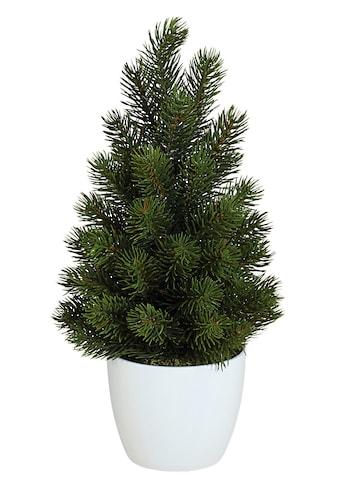 Creativ green Kunstbaum »Tannenbaum« (2 Stück) kaufen