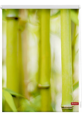 LICHTBLICK Seitenzugrollo »Klemmfix Motiv Bambus«, Lichtschutz, ohne Bohren,... kaufen