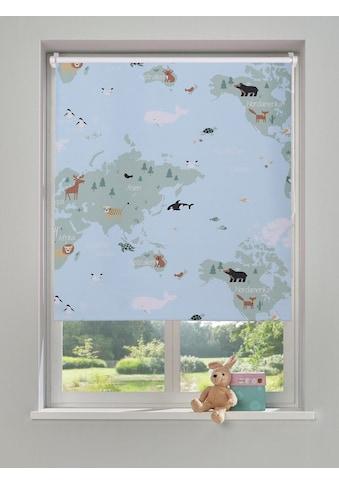 Lüttenhütt Rollo »Weltkarte«, verdunkelnd kaufen