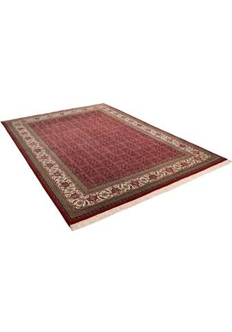 THEKO Orientteppich »Sirsa Seta Bidjar«, rechteckig, 12 mm Höhe, Flor aus 20% Seide, handgeknüpft, mit Fransen, Wohnzimmer kaufen