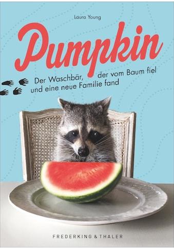 Buch »Pumpkin / Laura Young, Laura Young« kaufen