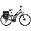 FISCHER Fahrräder E-Bike »ETD 1920«, 10 Gang Shimano Deore Schaltwerk, Kettenschaltung, Mittelmotor 250 W