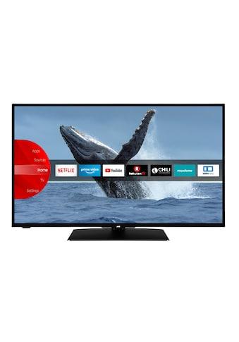 "JVC LED-Fernseher »LT-43VF5155«, 108 cm/43 "", Full HD, Smart-TV kaufen"