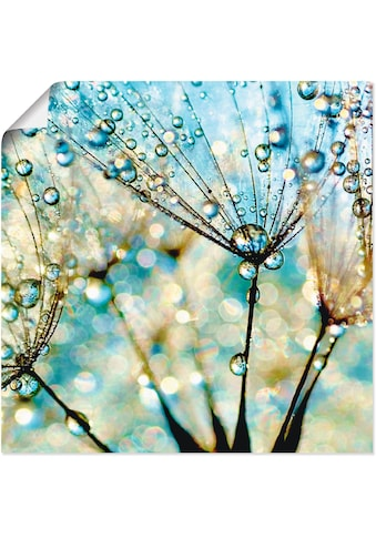 Artland Wandbild »Pusteblume Blaue Diamanten« kaufen