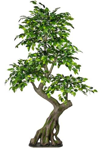 Creativ green Kunstbaum »Ficus Benjamini« kaufen