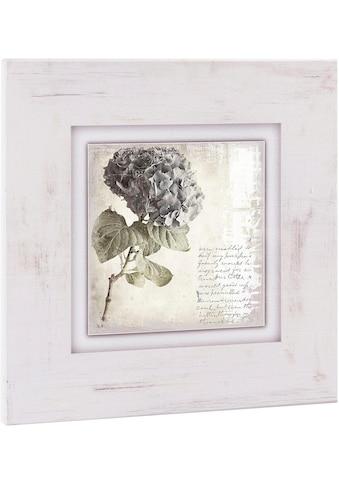 Home affaire Holzbild »Lila Blume« kaufen