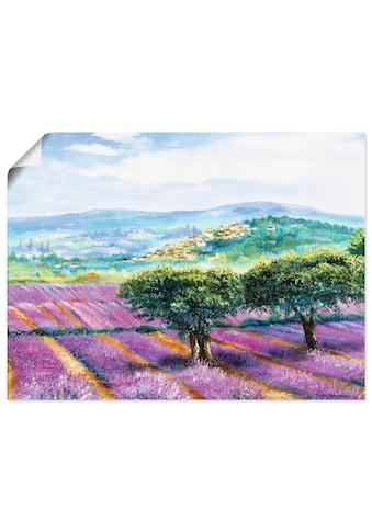 Artland Wandbild »Lavendelfeld« kaufen