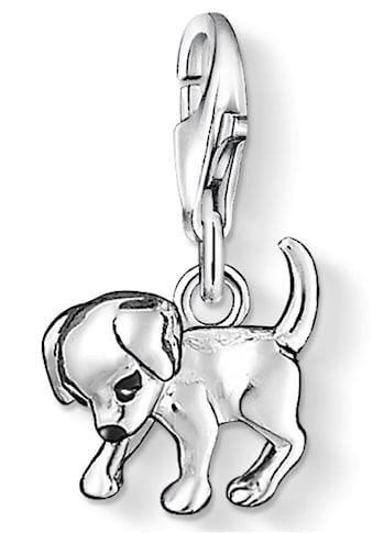 THOMAS SABO Charm-Einhänger »Hunde-Welpe, 0885-007-12«, mit Emaille kaufen