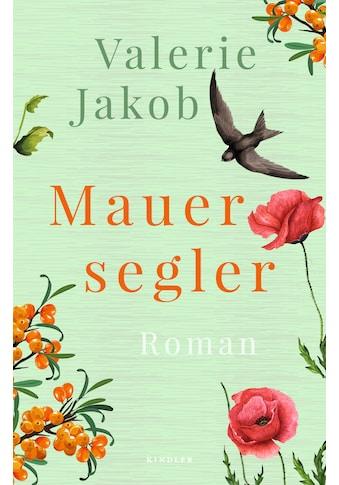 Buch »Mauersegler / Valerie Jakob« kaufen