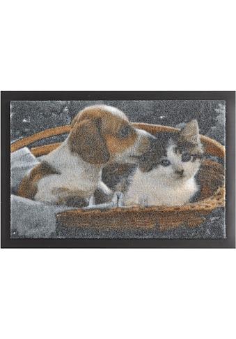 HANSE Home Fußmatte »Animals 2«, rechteckig, 7 mm Höhe, Fussabstreifer, Fussabtreter, Schmutzfangläufer, Schmutzfangmatte, Schmutzfangteppich, Schmutzmatte, Türmatte, Türvorleger, rutschhemmend beschichtet kaufen