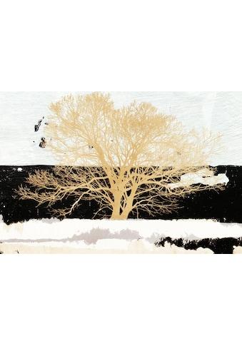 Wandbild »ALESSIO APRILE / Golden Tree« (auf 12 mm MDF Platte, 100/1,2/70 cm) kaufen
