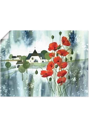 Artland Wandbild »Blühender Mohn« kaufen