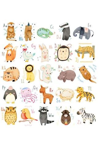 Wall-Art Wandtattoo »Bunte Tierwelt Alphabet« kaufen