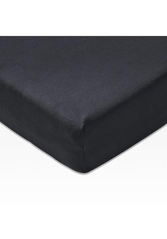 Joop! Spannbettlaken »Mako Jersey«, in höchster Qualität kaufen
