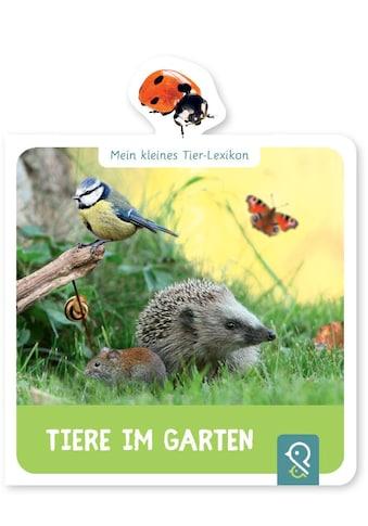 Buch »Tiere im Garten / Hannah Kastenhuber« kaufen