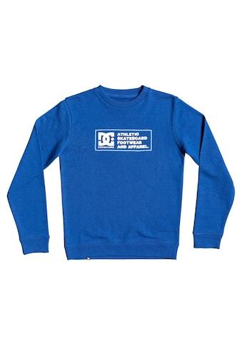 DC Shoes Sweatshirt »Sketchy Zone« kaufen