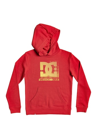 DC Shoes Hoodie »Evolved« kaufen