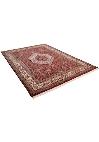 THEKO Orientteppich »Sirsa Seta«, rechteckig, 12 mm Höhe, Flor aus 20% Seide, handgeknüpft, mit Fransen, Wohnzimmer kaufen