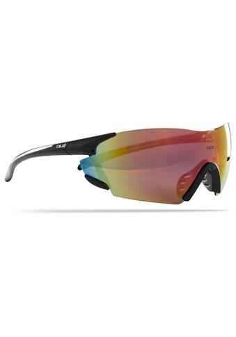 Trespass Sonnenbrille »Amp DLX« kaufen