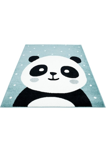 Carpet City Kinderteppich »Bubble Kids 1334«, rechteckig, 11 mm Höhe, Panda Bär in... kaufen