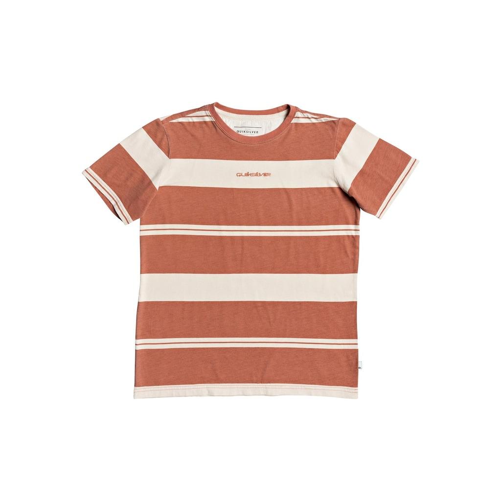 Quiksilver T-Shirt »Maxed Hero«