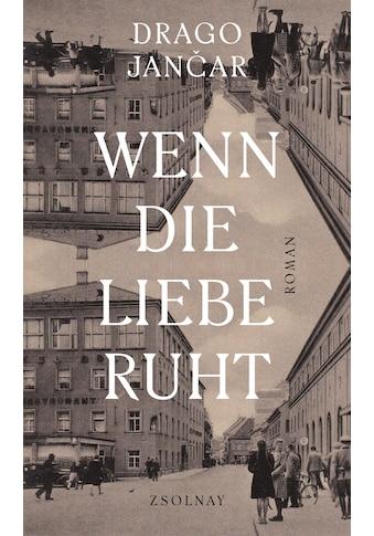 Buch »Wenn die Liebe ruht / Drago Jancar, Daniela Kocmut« kaufen