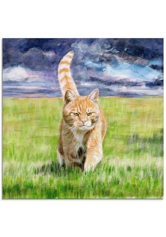 Artland Glasbild »Auf Jagd«, Haustiere, (1 St.) kaufen