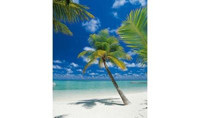 Komar Fototapete »Ari Atoll«, bedruckt-Wald-Meer, ausgezeichnet lichtbeständig kaufen