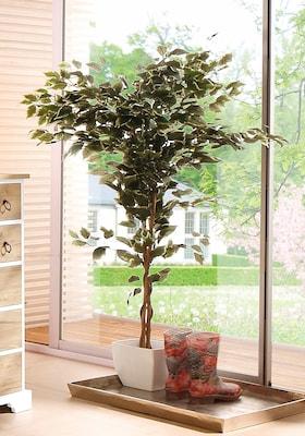 Kunstpflanze Ficus