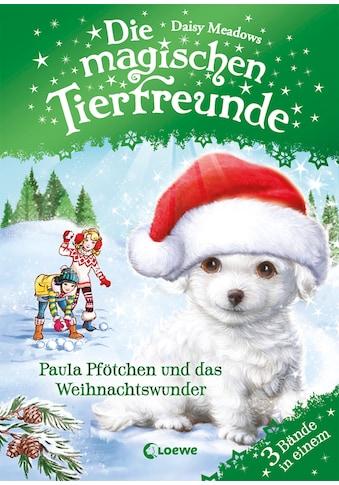 Buch »Die magischen Tierfreunde - Paula Pfötchen und das Weihnachtswunder / Daisy... kaufen