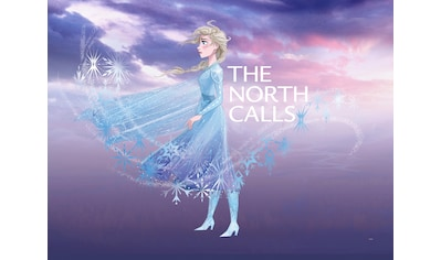 Komar Poster »Frozen Elsa The North Calls«, Disney kaufen