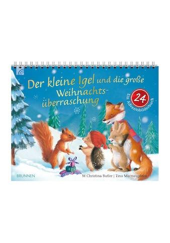 Buch »Der kleine Igel und die große Weihnachtsüberraschung / M Christina Butler, Tina... kaufen