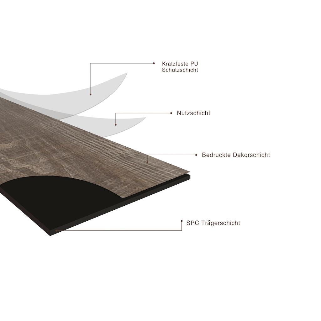 my home Vinyllaminat »Modena SPC«, ohne Fuge, 1200 x 180 mm, Stärke 4 mm, 2,6 m²