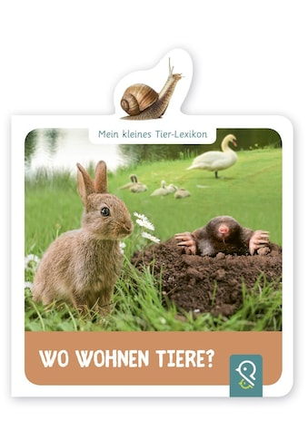 Buch »Wo wohnen Tiere? / Hannah Kastenhuber« kaufen