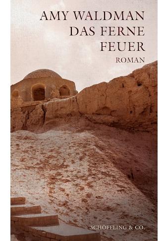 Buch »Das ferne Feuer / Amy Waldman, Brigitte Walitzek« kaufen