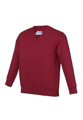 AWDIS V-Ausschnitt-Pullover »Academy Kinder Junior Schul Sweatshirt mit V-Ausschnitt (2 Stück/Packung)« kaufen