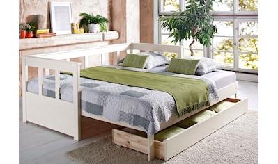 Home affaire Daybett »Aira«, mit ausziehbarer Liegefläche kaufen