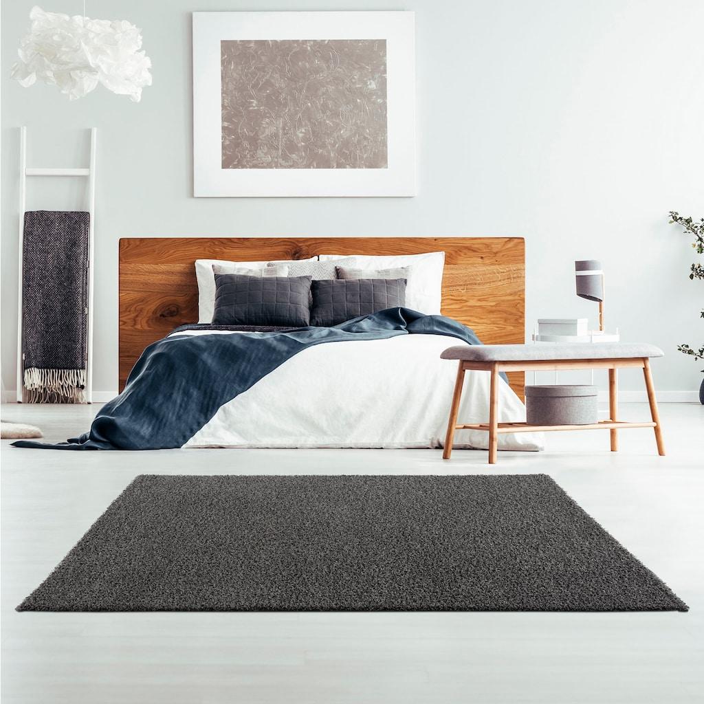 Sanat Hochflor-Teppich »LOCA«, rechteckig, 30 mm Höhe, Wohnzimmer
