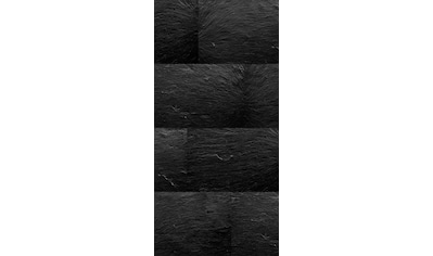 Sanotechnik Duschrückwand »Sanowall«, Höhe: 205 cm kaufen