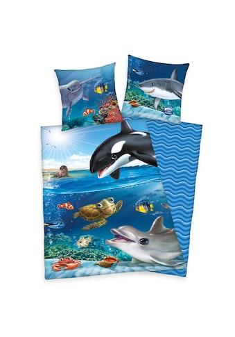 Herding Kinderbettwäsche »Animal Club Ocean« kaufen