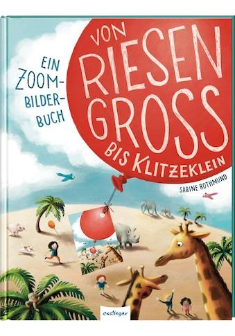Buch »Von riesengroß bis klitzeklein / Sabine Rothmund, Julia Klee« kaufen