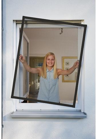 SCHELLENBERG Insektenschutz-Fenster »PLUS«, BxH: 100x120 cm, anthrazit kaufen