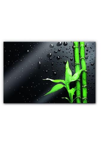 Wall-Art Küchenrückwand »Spritzschutz Bambus Bamboo« kaufen
