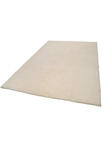 THEKO Wollteppich »Tanger 1«, rechteckig, 20 mm Höhe, reine Wolle, echter Berber,... kaufen