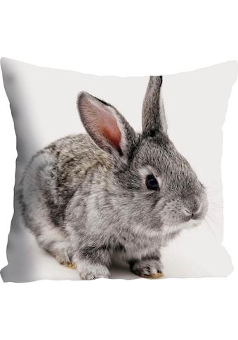 queence Kissenhülle »Noel«, (1 St.), mit Kaninchen kaufen